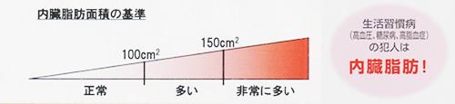 info_img02.jpg